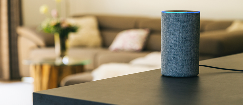 Security and Voice Assistants